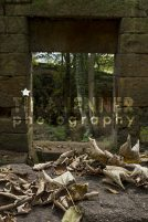 20141003_Lumsdale Valley_0087