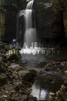 20141003_Lumsdale Valley_0119