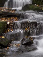20141003_Lumsdale Valley_0192